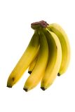 Bananas. Photo of a sheaf of bananas on a white background Stock Photography