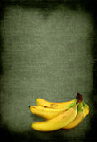 Bananas against old background. Bunch of ripe bananas against rough retro background Stock Image