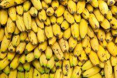 Bananas amarelas em uma pilha no mercado Fundo amarelo da textura Fotos de Stock