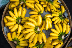 Bananas baby Royalty Free Stock Image