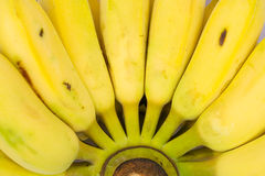 Bananas on a background Stock Photo