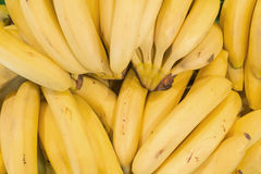 Bananas background Royalty Free Stock Images