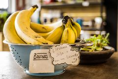Bananas for smoothie stock photography