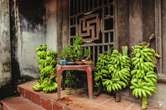 Bananas and bonsai in selling Royalty Free Stock Image