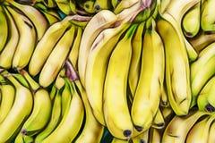 Bananas in bulk in greengrocer. Close up bananas in bulk in greengrocer stock image
