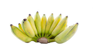 Bananas bunch isolated on white background cutout Stock Images