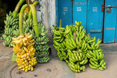 Bananas in a bunch up for sale Stock Photography