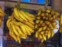 Bananas in bunches. For sale royalty free stock image