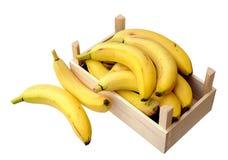 Bananas in case Royalty Free Stock Photo