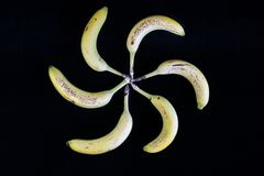 Bananas in a circle pattern. Colorful bananas view from the top with spiral circle pattern royalty free stock images