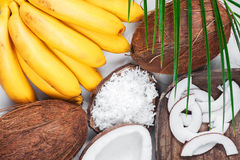 Bananas, coconuts and palm leaf Royalty Free Stock Photos
