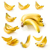 Bananas collection Stock Photo