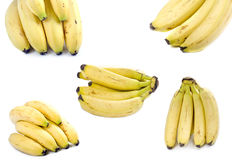 Bananas compilation. On white background Royalty Free Stock Images