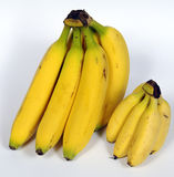 Bananas in different size bunches Royalty Free Stock Photo