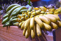 Bananas on display Royalty Free Stock Photo
