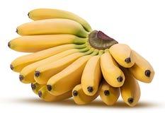 Bananas do bebê fotos de stock royalty free