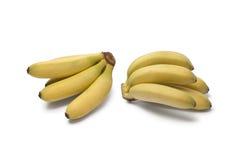 Bananas do bebê foto de stock