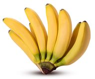Bananas do bebê do ramo foto de stock
