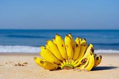 Bananas do grupo Foto de Stock Royalty Free