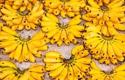 Bananas do ovo. imagens de stock