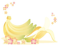 Bananas and frangipani Royalty Free Stock Images
