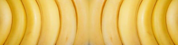 Bananas frescas no fundo branco, fantasia Fotos de Stock