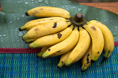 Bananas. With fresh background and water drop on banana leaf Stock Photo