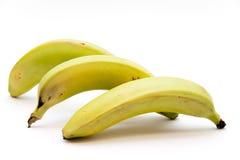 Bananas freshly. On white background Royalty Free Stock Photos