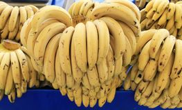 Bananas Fruit big harvest Stock Image
