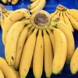 Bananas Fruit big harvest Royalty Free Stock Image