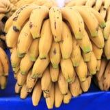 Bananas Fruit big harvest Royalty Free Stock Photo