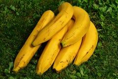 Bananas, Fruits, Fruit, Healthy Stock Photos
