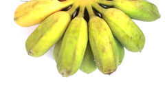 Bananas that are going to be cooked are greenish yellow on a whi Stock Photo