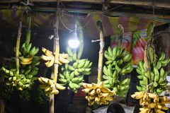 Bananas green for sale closeup marketplace royalty free stock images