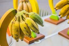 Bananas hanging Stock Images