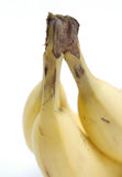 Bananas II. Bundle of bananas Stock Photo