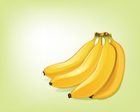 Bananas. Illustration of bunch of bananas Royalty Free Stock Photography