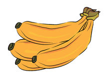 Bananas illustration Stock Photos