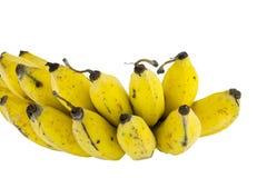 Bananas isoladas no branco Fotografia de Stock Royalty Free