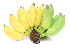 Bananas isolated. On white background Royalty Free Stock Photography
