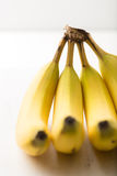 Bananas isolated on brightly lit white background Royalty Free Stock Images