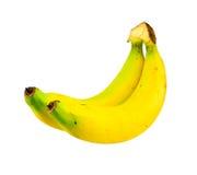Bananas isolated white background. Bananas isolated on white background Royalty Free Stock Photos