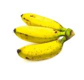 Bananas isolated Stock Photography