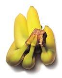 Bananas isolates on White Stock Images