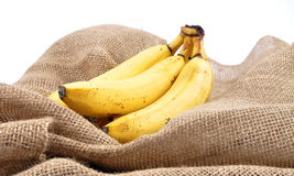 Bananas on jute Stock Photos