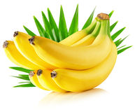 Bananas with leaves isolated on the white background.  Royalty Free Stock Photos