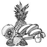 Bananas lemon strawberry cherry pineapple drawing Royalty Free Stock Photo