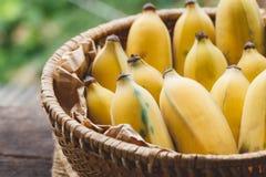 Bananas maduras frescas Foto de Stock