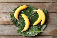 Bananas maduras frescas com folhas Imagens de Stock Royalty Free