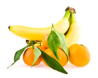 Bananas and mandarines Stock Images